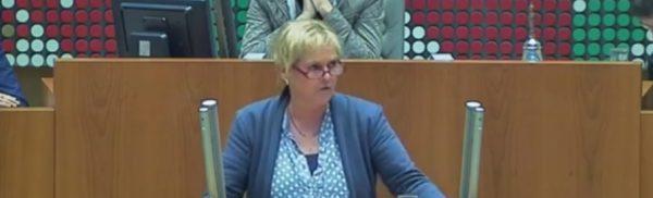 Monika Pieper im Plenum